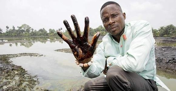 The environmental damage in the Niger Delta area may take 30 years to clean up