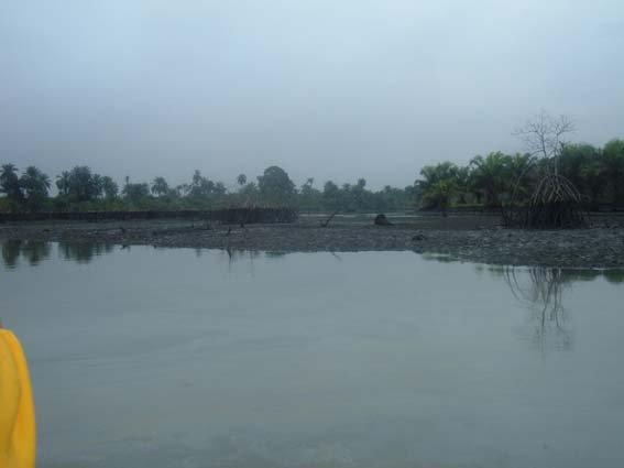 22 river polution 3.JPG