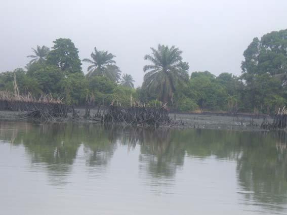 25 river polution 6.JPG