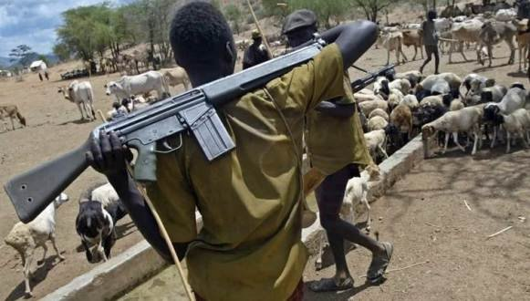 Nigerian Cattle herdsmen are armed to the hilt
