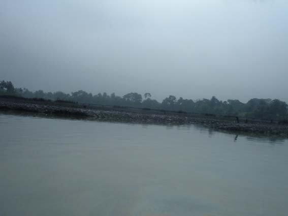 29 river polution 10.JPG