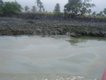 30 river polution 11.JPG