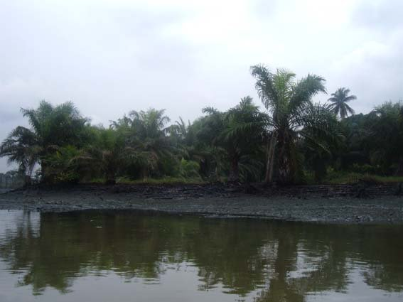32 river polution 13.JPG