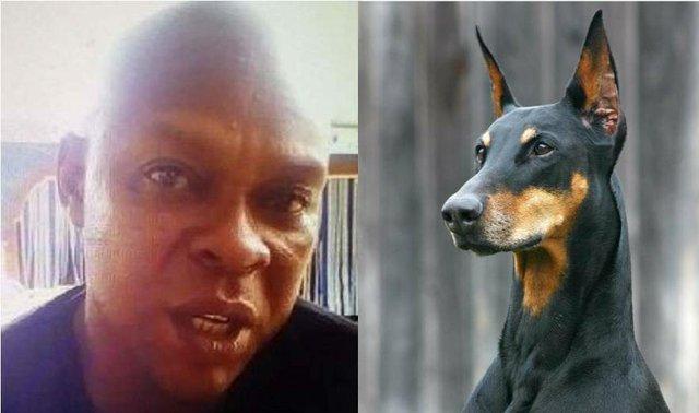 Joachim Iroko - better known as Joe Fortemose Chinakwe named a dog Buhari