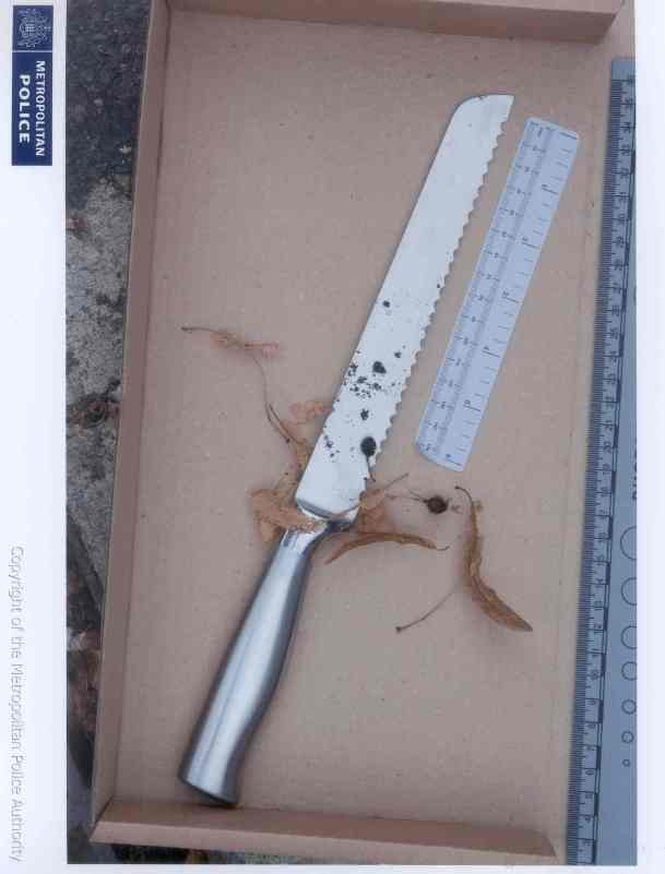 One of the knives found at the murder scene