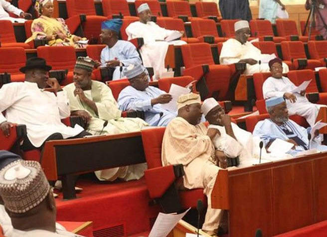 A cross-section of Nigerian Senators during a Plenary
