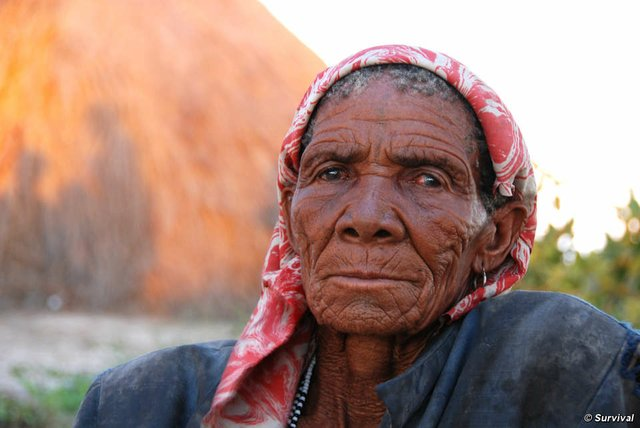 The Bushmen are required to obtain access permits on their ancestral land by a government intent on driving them out of the Central Kalahari Game Reserve.